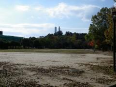 新亀山公園11月